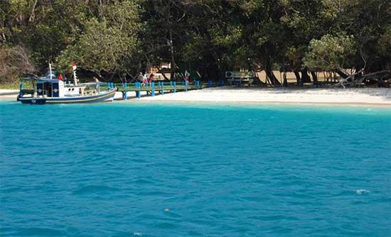 Berkunjung dan Menikmati Keindahan dan Keunikan Pulau Peucang Berwisata Di Ujung Kulon