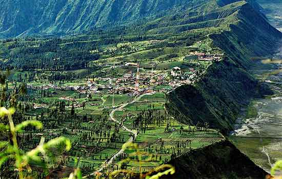 Menikmati Cemoro Lawang Desa Cantik nan Menakjubkan Gerbang Menuju Kawasan Bromo